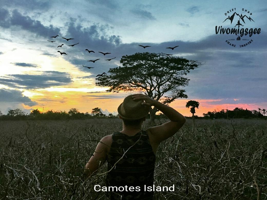 Camotes Safari.jpg